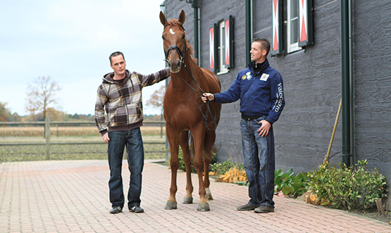 http://www.virtualzonehorses.nl/uploads/images/team.jpg